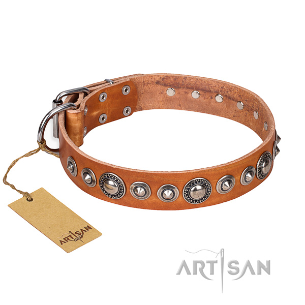 Full grain leather dog collar made of gentle to touch material with corrosion resistant traditional buckle