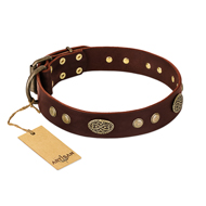 """Old-fashioned Glamor"" FDT Artisan Brown Leather English Bulldog Collar with Old Bronze Look Plates and Circles"
