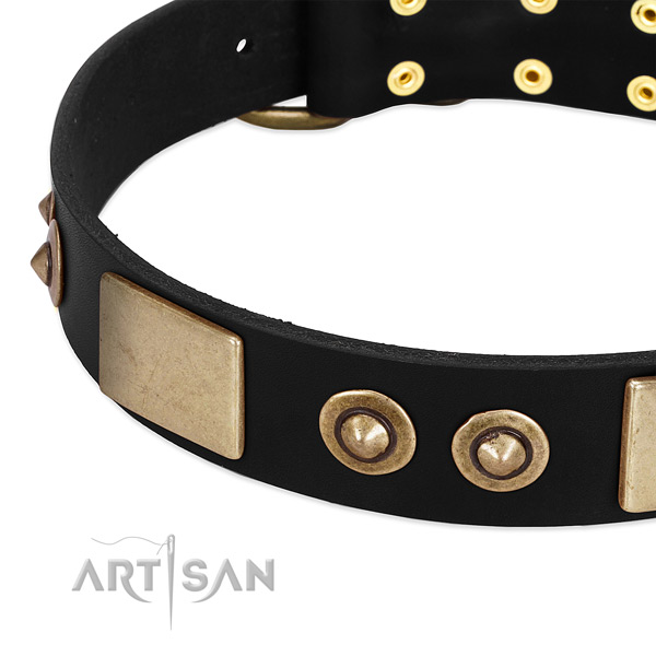 Corrosion proof adornments on full grain leather dog collar for your pet