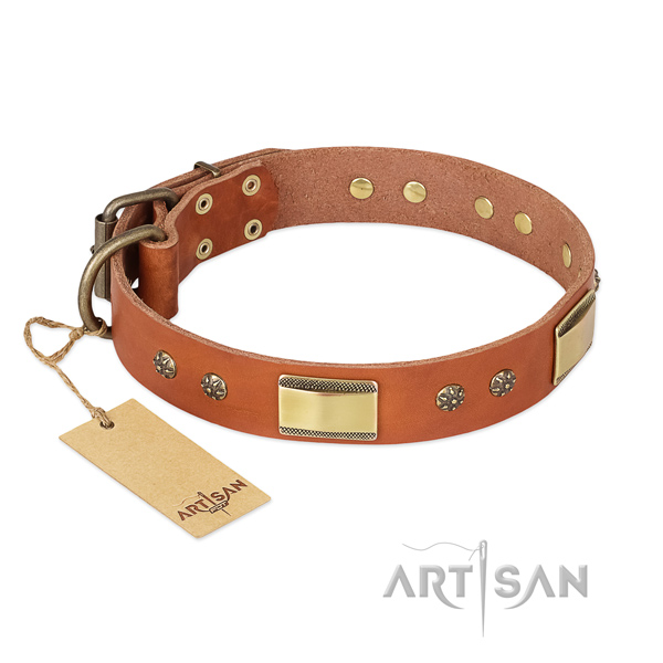 Extraordinary genuine leather collar for your dog