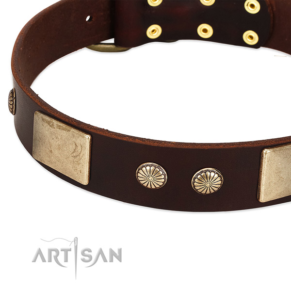 Rust resistant hardware on leather dog collar for your dog
