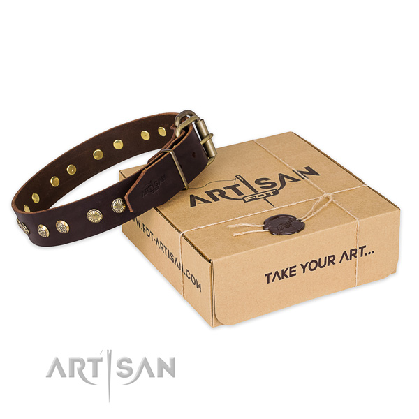 Corrosion proof D-ring on genuine leather collar for your impressive canine