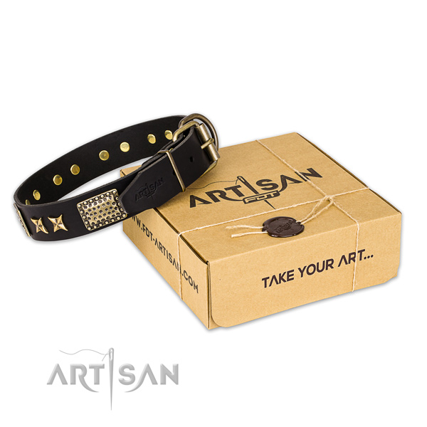 Corrosion resistant traditional buckle on full grain natural leather collar for your attractive doggie