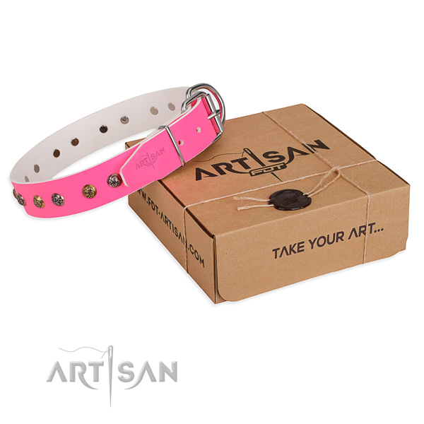 Comfortable wearing dog collar with Significant rust resistant embellishments