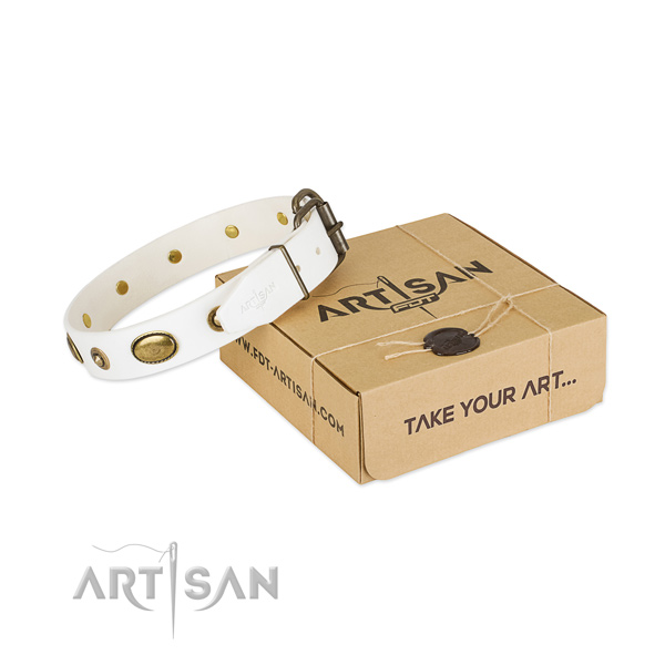 Perfect fit natural leather collar for your beautiful four-legged friend