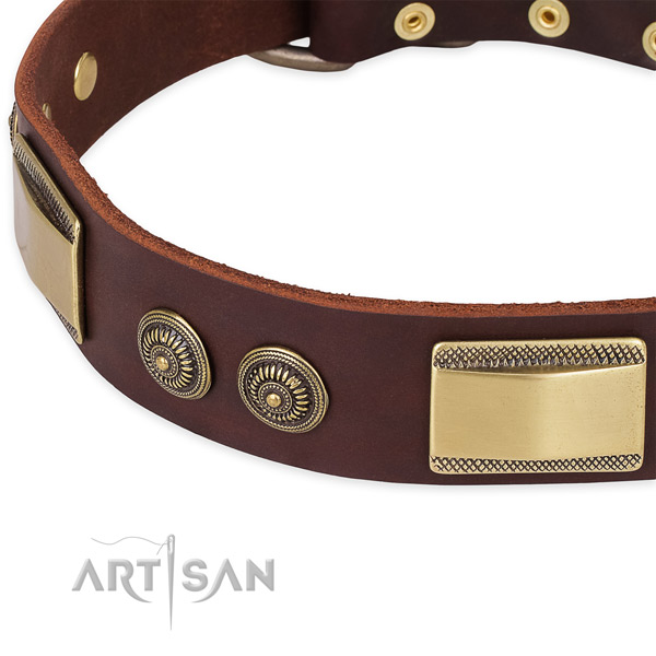 Corrosion resistant traditional buckle on leather dog collar for your four-legged friend