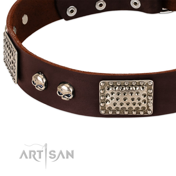 Corrosion proof studs on genuine leather dog collar for your dog