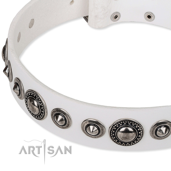 Stylish walking studded dog collar of high quality full grain natural leather