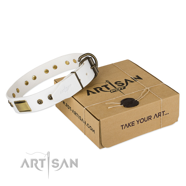 Amazing leather collar for your beautiful canine