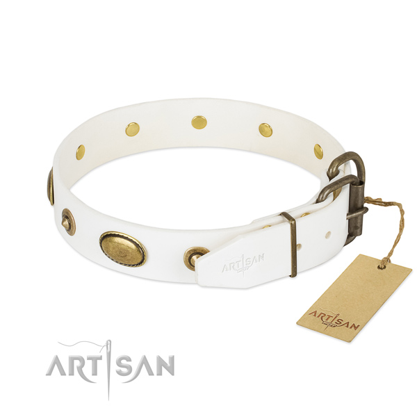 Rust-proof studs on full grain leather dog collar for your four-legged friend