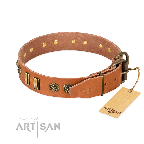 Corrosion resistant studs on natural leather dog collar for your four-legged friend
