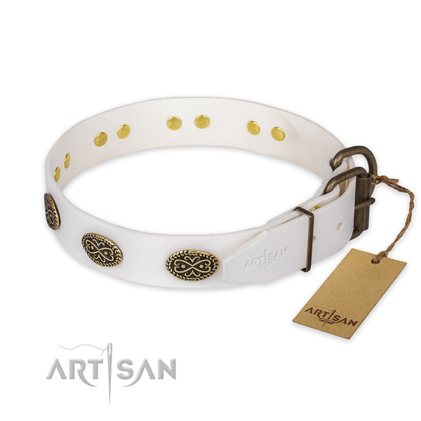 Corrosion proof buckle on full grain natural leather collar for basic training your four-legged friend
