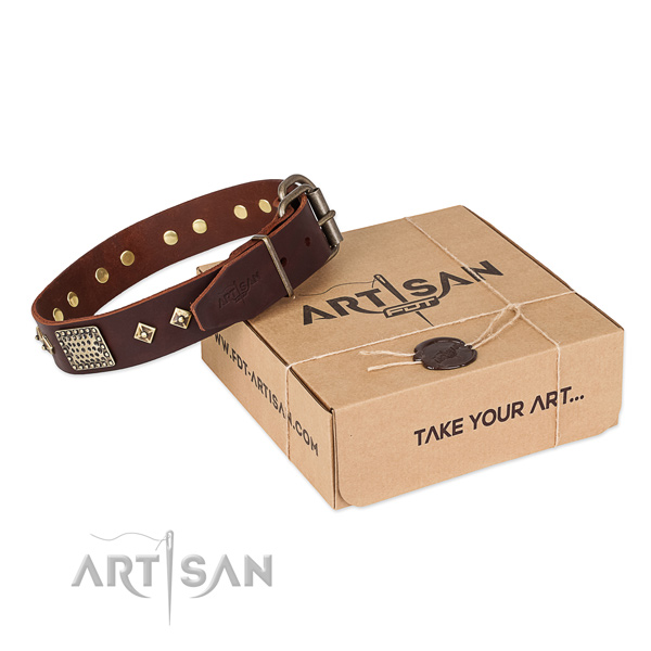 Adorned full grain genuine leather collar for your impressive dog