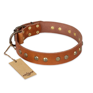 """Spring Flavor"" FDT Artisan Adorned Leather English Bulldog Collar with Old Bronze-Plated Engraved Studs"