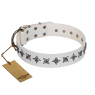 """Midnight Stars"" FDT Artisan Fashionable Leather English Bulldog Collar with Old Silver-like Plated Decorations"