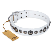 """Ice Age"" FDT Artisan White Studded Leather English Bulldog Collar"