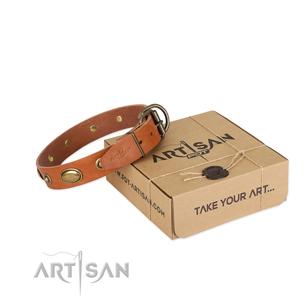 Reliable embellishments on full grain genuine leather dog collar for your pet