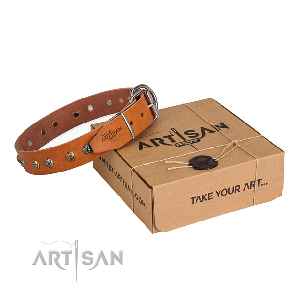 Stylish walking dog collar with Impressive rust resistant adornments