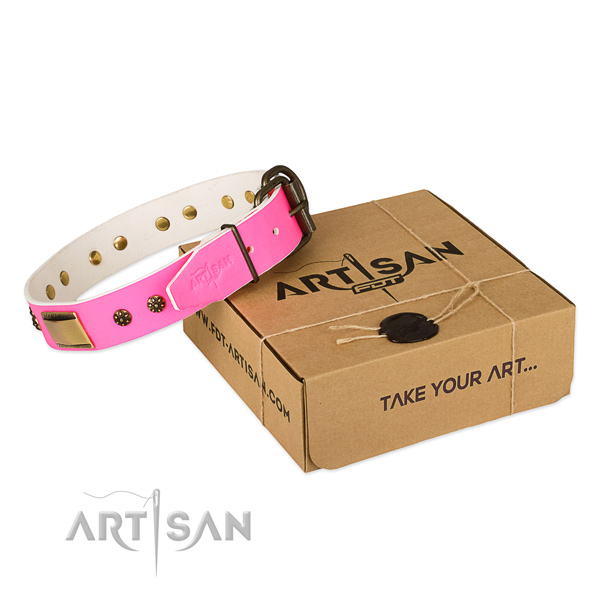 Comfortable leather collar for your stylish pet