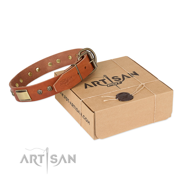 Top quality full grain natural leather collar for your attractive four-legged friend