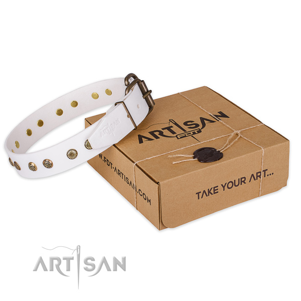 Reliable hardware on full grain leather collar for your stylish doggie