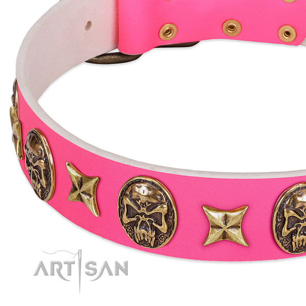 Full grain leather dog collar with exceptional studs