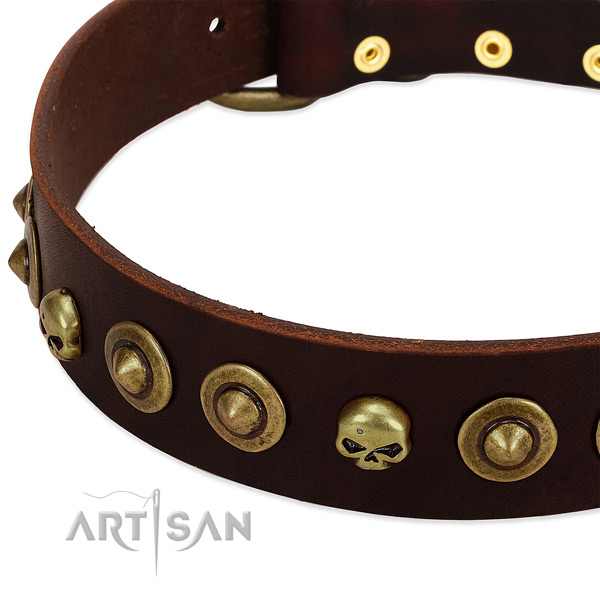 Fashionable decorations on genuine leather collar for your doggie