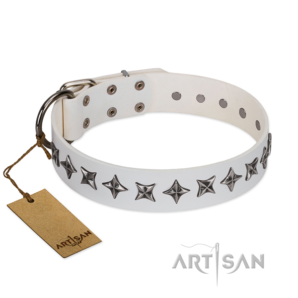 Walking dog collar of reliable natural leather with decorations