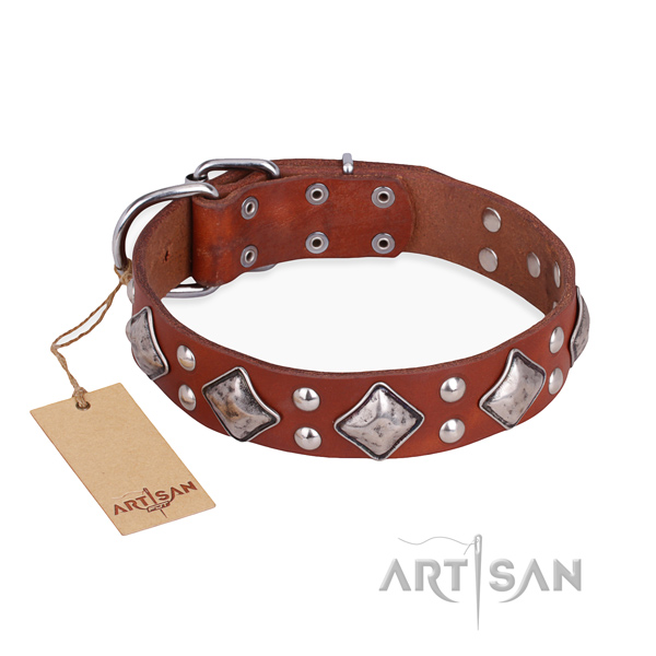 Everyday use incredible dog collar with strong buckle