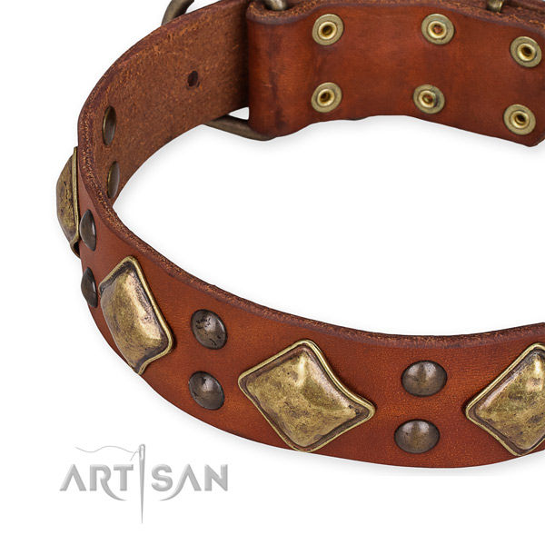 Genuine leather collar with rust-proof fittings for your attractive four-legged friend