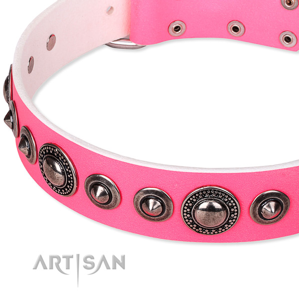 Fancy walking embellished dog collar of reliable full grain genuine leather