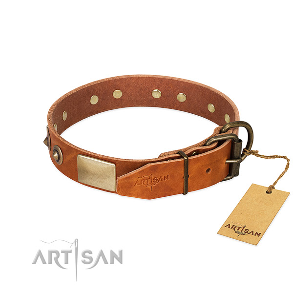 Durable hardware on everyday use dog collar