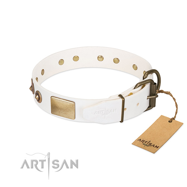 Corrosion proof decorations on full grain natural leather dog collar for your canine