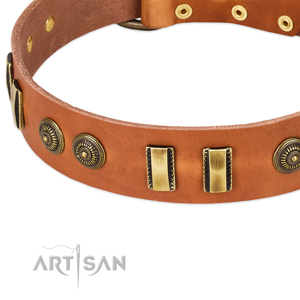 Durable adornments on full grain genuine leather dog collar for your doggie