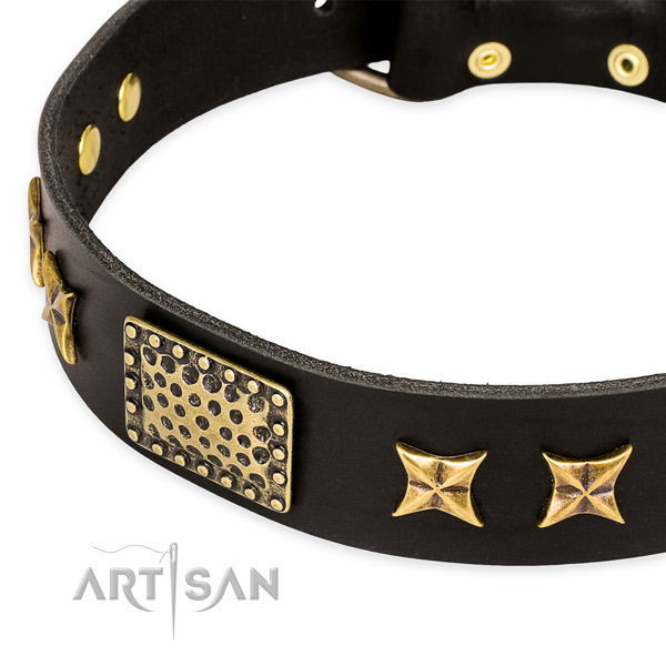 Natural genuine leather collar with rust resistant fittings for your lovely four-legged friend