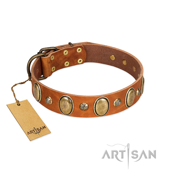 Natural leather dog collar of soft to touch material with inimitable adornments