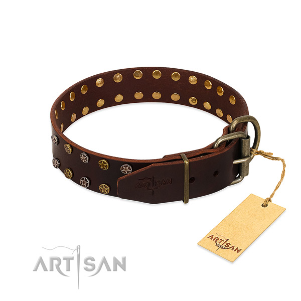 Daily use full grain leather dog collar with awesome embellishments