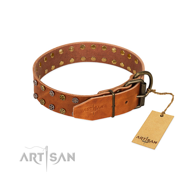 Daily walking full grain natural leather dog collar with top notch adornments