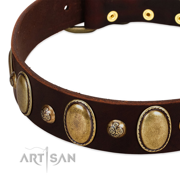 Leather dog collar with awesome studs