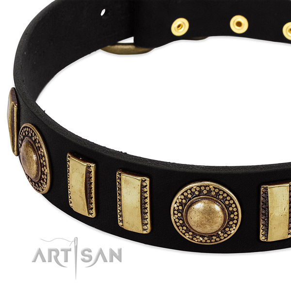 Top rate leather dog collar with strong traditional buckle