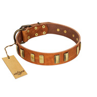 """Olive Slice"" FDT Artisan Tan Leather English Bulldog Collar with Engraved and Smooth Plates"