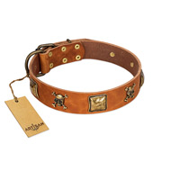 """Knights Templar"" FDT Artisan Tan Leather English Bulldog Collar with Skulls and Crossbones Combined with Squares"