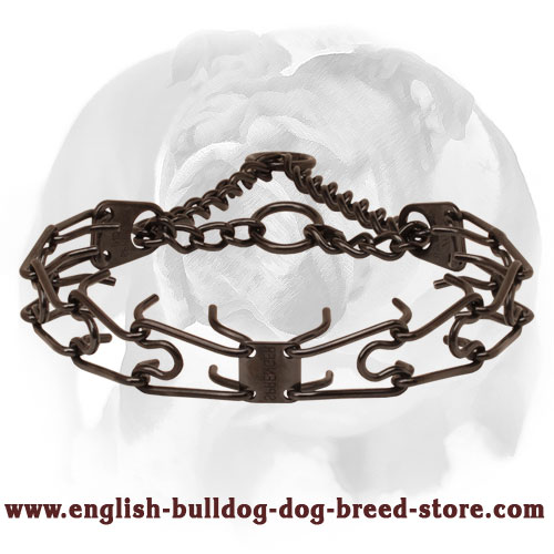 Pinch collar of rust resistant black stainless steel for badly behaved dogs