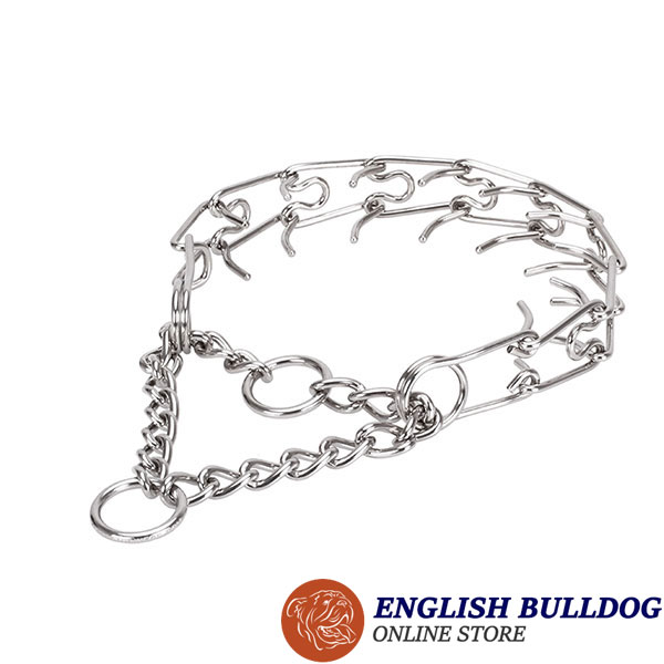 Pinch collar of rust resistant stainless steel for badly behaved dogs