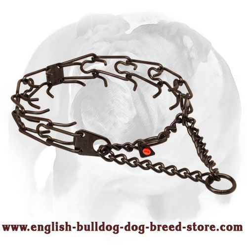 Prong collar of black stainless steel for ill behaved pets