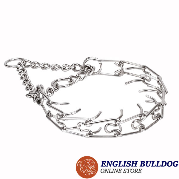 Prong collar of stainless steel for ill behaved pets