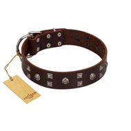 """Brown Shadow"" Designer Handmade FDT Artisan Brown Leather English Bulldog Collar"