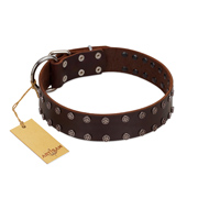"""Star Party"" Handmade FDT Artisan Brown Leather English Bulldog Collar with Silver-Like Studs"