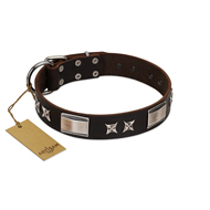 """Satin Beauts"" FDT Artisan Brown Leather English Bulldog Collar with Stars and Plates"