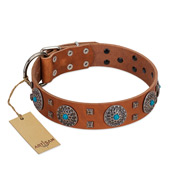 """Blue Sands"" FDT Artisan Tan Leather English Bulldog Collar with Silver-like studs and Round Conchos with Stones"